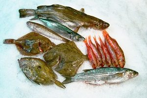Havfiskeri fra Hirtshals - Vragfiskeri, Det Gule Rev