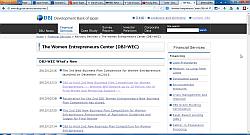 Japan Small Business, Women Entrepreneurs Center (DBJ-WEC)