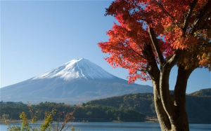 Doing Business in Japan Guide