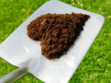 What Is the Difference Between Compost and Fertilizer