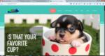 Zippy Pet Services