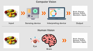 The Computer Vision in 2020